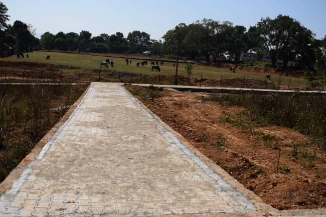 हापुरमा ३५ करोडको वन उद्यान बन्दै